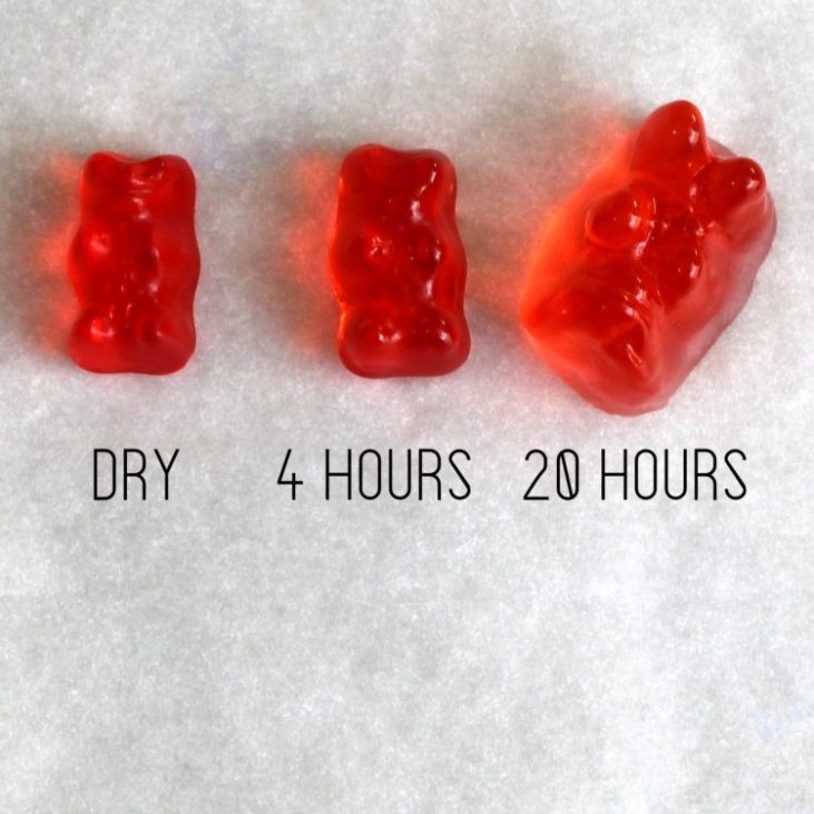 Vodka Gummy Bears Recipe Mix That Drink This gummy bear recipe is perfect for customizing your own flavors and colors. vodka gummy bears recipe mix that drink