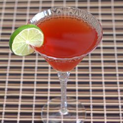 Nantucket Cocktail recipe with brandy, cranberry juice and white grapefruit juice.