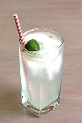 Gin & Tonic classic drink with lime squeeze