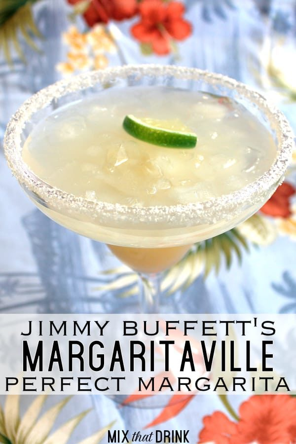 margaritaville triple blender