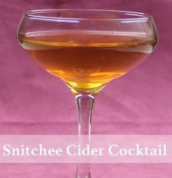 Snitchee's Cider drink recipe - Spiced Rum, Martinelli's Apple Cider, Cinnamon Stick
