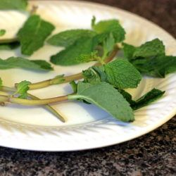 Quick tip: how to revive tired mint garnish