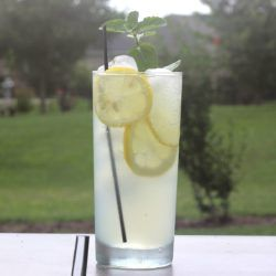 The Limoncello Collins drink recipe, featuring limoncello, gin, lemon juice and club soda, is perfect for barbecues.